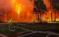 Крупный пожар в Австралии достиг жилых домов в пригороде Сиднея