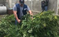 На Херсонщине отец полицейского торговал наркотиками