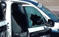 Стрельба возле школы в Мексике: погибли пять полицейских