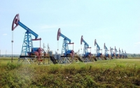 Нефть дорожает на фоне сокращения запасов в США