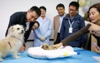 Невиданное живое существо создали в Китае