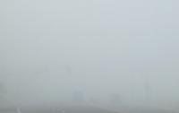 Марафонец из-за тумана не нашел поворот и проиграл забег