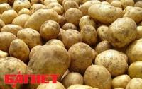 Картошка подорожает на треть
