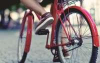 Столичні школи обіцяють обладнати парковками для велосипедів