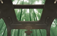 Ford планирует выпускать автомобили из бамбука (видео)
