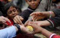 Каждый девятый человек на планете голодает, - ООН
