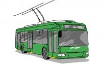 Пассажиры сломали троллейбус и разошлись пешком (видео)