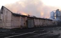В Николаевской области произошел масштабный пожар