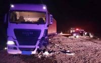 Во Львовской области легковушка влетела в автопоезд: погибли люди