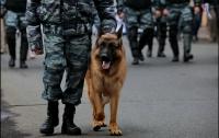 В Украине заработает Кинологический центр полиции