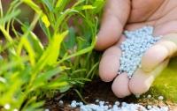 В Украине и дальше будут дорожать удобрения