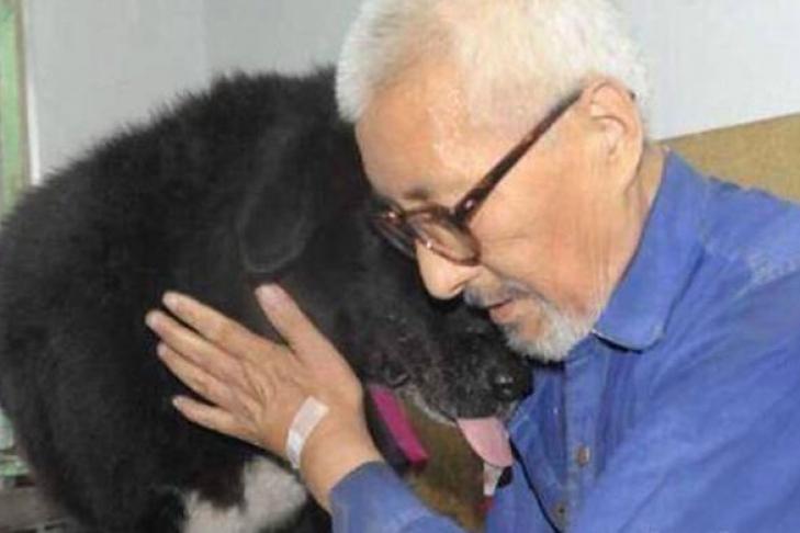 Старый китаец завещал все свои сбережения собаке