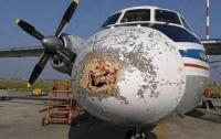 Уфологи: на российский самолет напали инопланетяне