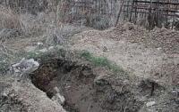 Из могил выбросили человеческие останки