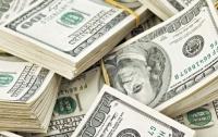 Школьник украл у отца пять тысяч долларов и купил друзьям хомячков