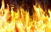 МВД Казахстана назвало причину пожара в автобусе
