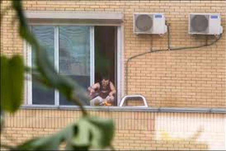 Видео из соседских окон мне