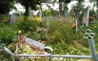 Под Черкассами пьяные выпускники разгромили кладбище