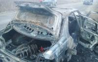На Закарпатье во время движения загорелся автомобиль