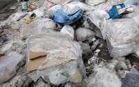 Женщина впала в депрессию и накопила дома 27 тонн мусора