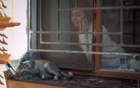 В Одессе неизвестные украли скульптуру любимого кота Жванецкого