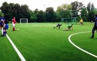 В Киеве чиновники украли 9 млн гривен на ремонте футбольных полей