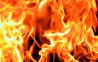 В Киеве из огня спасли 6 человек