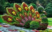 На Певческом поле открылась цветочная «Единая Украина» (ФОТО)