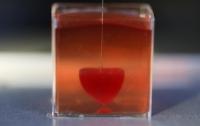 В Израиле впервые в истории напечатали живое 3D-сердце