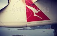 Трехметровый питон на высоте 9 км «прокатился» на обшивке авиалайнера (ФОТО)