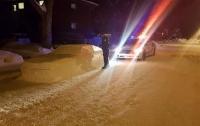 Водитель разыграл полицейских вылепленным из снега автомобилем (ФОТО)