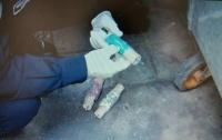 В мусорном баке в центре Киева обнаружили самодельное взрывное устройство