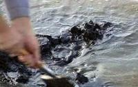 В Черном море найден мазут