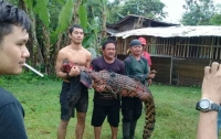 Родственники убитого крокодилом в отместку убили 300 рептилий