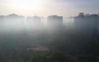 Виноградарь в Киеве затянуло густым смогом и едким дымом