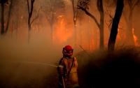 Австралию охватили сильнейшие пожары и засыпало снегом (видео)
