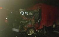 ДТП под Черновцами: столкнулись микроавтобусы, есть жертвы