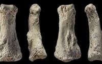 Ученые определили когда древние люди начали миграцию за пределы Африки