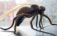 Россиянин впал в кому на Пхукете после укуса комара