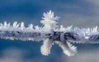 Украине прогнозируют мокрый снег и заморозки