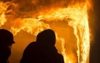 На Донбассе более 10 боевиков сгорели заживо