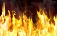Калифорнию продолжают уничтожать сильнейшие пожары