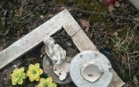 На Буковине вандалы повредили восемь захоронений