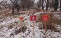 Глава МинВОТ назвал число погибших от мин на Донбассе