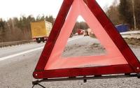 Во Львовской области автомобиль влетел в дерево, трое пострадавших
