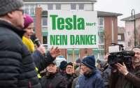 В Германии ополчились на завод Tesla рядом с заповедником