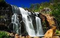 Водопады в Австралии начали течь снизу вверх (видео)
