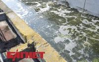 Киев пережил пик паводка