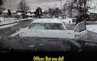 Игравшая с щенком женщина-водитель врезалась в машину шефа полиции