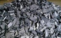 Группа волынян нелегально изготавливали древесный уголь для продажи в Польшу